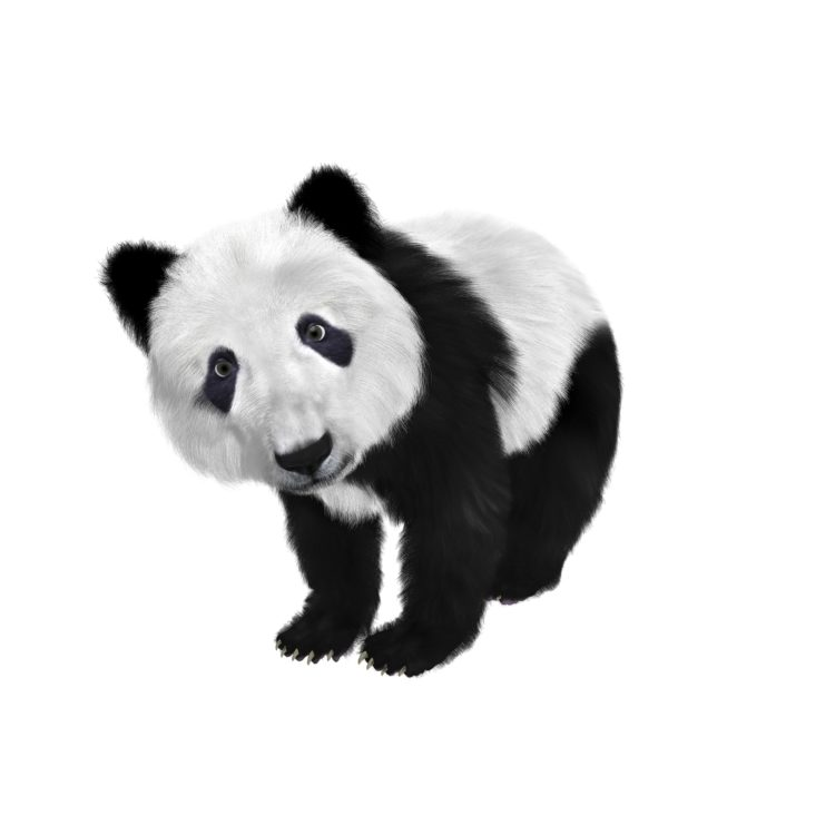 panda helper ios